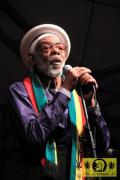 Freddie Notes (Jam) with The Soul Radics 20. This Is Ska Festival - Wasserburg, Rosslau 24. Juni 2016 (5).JPG