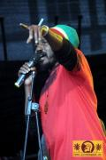 Jah Mali (USA) with The Reggae Jam Band 21. Reggae Jam Festival - Bersenbrueck 26. Juli 2015 (12).JPG